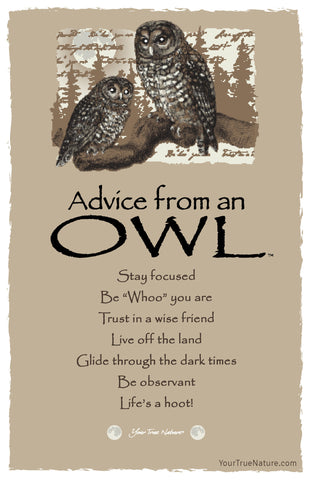 Advice from an Owl Frameable Art Postcard