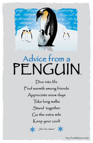 Advice from a Penguin Frameable Art Postcard