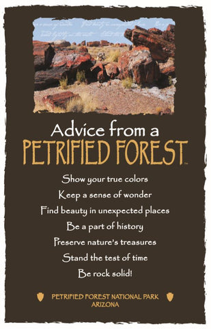 Advice from a Petrified Forest- Petrified Forest National Park - Frameable Art Card