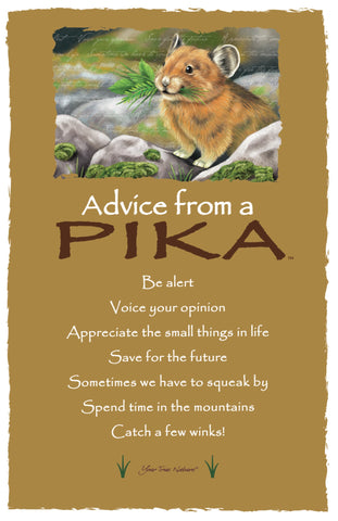 Advice from a Pika Frameable Art Card