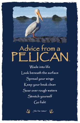 Advice from a Pelican Frameable Art Card