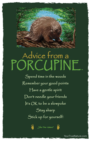 Advice from a Porcupine Frameable Art Postcard