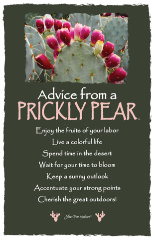 Advice from a Prickly Pear - Frameable Art Card