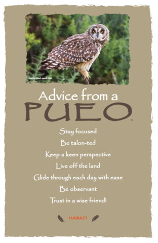 Advice from a Pueo- Hawai'i- Frameable Art Card