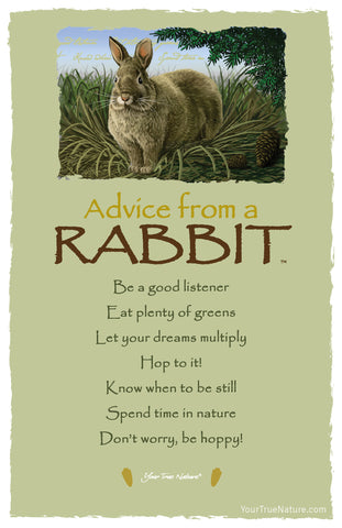 Advice from a Rabbit Frameable Art Card