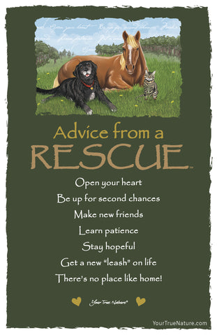Advice from a Rescue Frameable Art Card