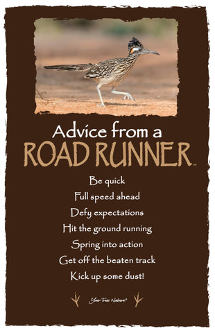 Advice from a Roadrunner- Frameable Art Card
