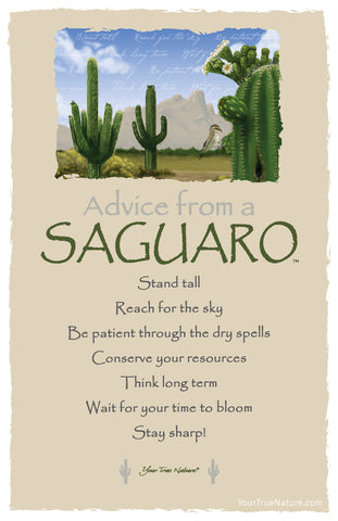Advice from a Saguaro Frameable Art Card