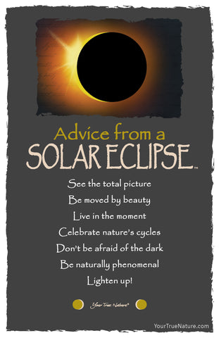 Advice from a Solar Eclipse Frameable Art Postcard
