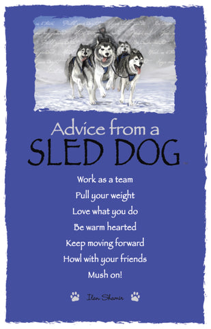 Advice from a Sled Dog Frameable Art Postcard