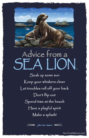 Advice from a Sea Lion Frameable Art Postcard