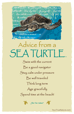 Advice from a Sea Turtle Frameable Art Card