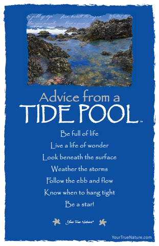 Advice from a Tide Pool Frameable Art Postcard