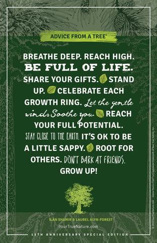 Advice from a Tree - 15th Anniversary Frameable Art Postcard