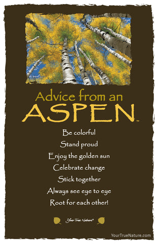 Advice from an Aspen Frameable Art Postcard