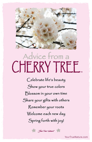 Advice from a Cherry Tree Frameable Art Card