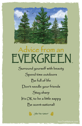 Advice from an Evergreen Frameable Art Card