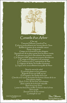 Advice from a Tree - Translated in French - Frameable Art Postcard