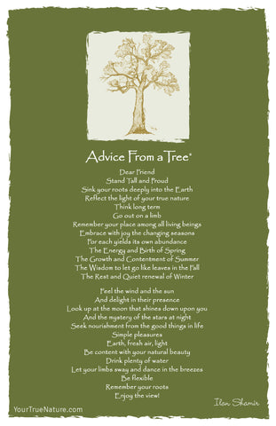 Advice from a Tree Frameable Art Card
