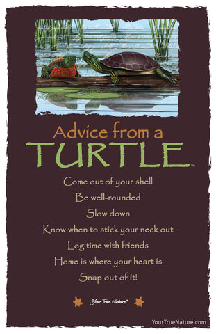 Advice from a Turtle Frameable Art Card