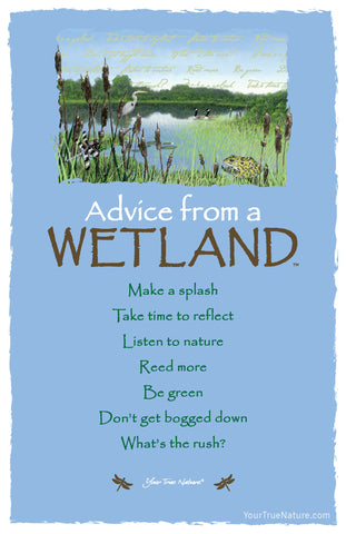 Advice from a Wetland Frameable Art Card