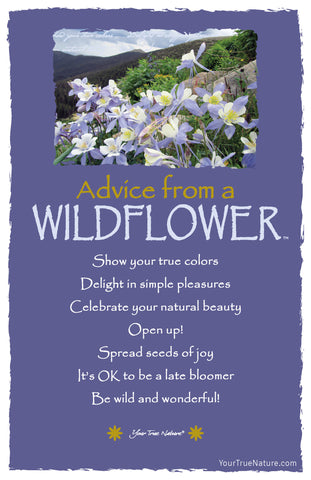 Advice from a Wildflower -  Columbine Frameable Art Card