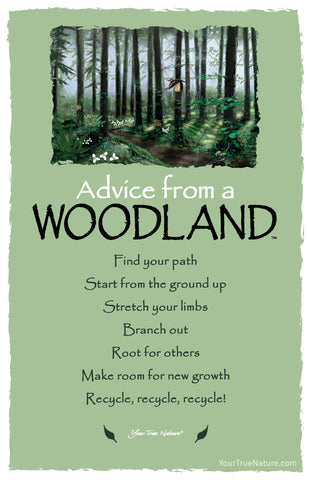 Advice from a Woodland Frameable Art Postcard