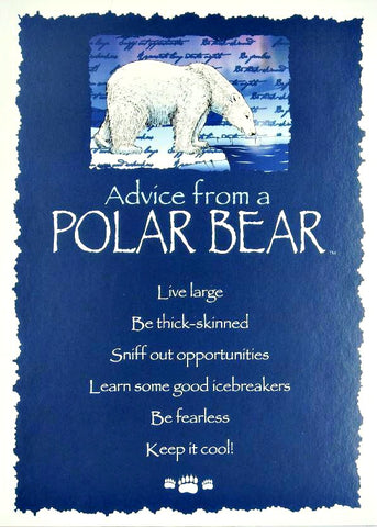 Advice from a Polar Bear Greeting Card - Blank