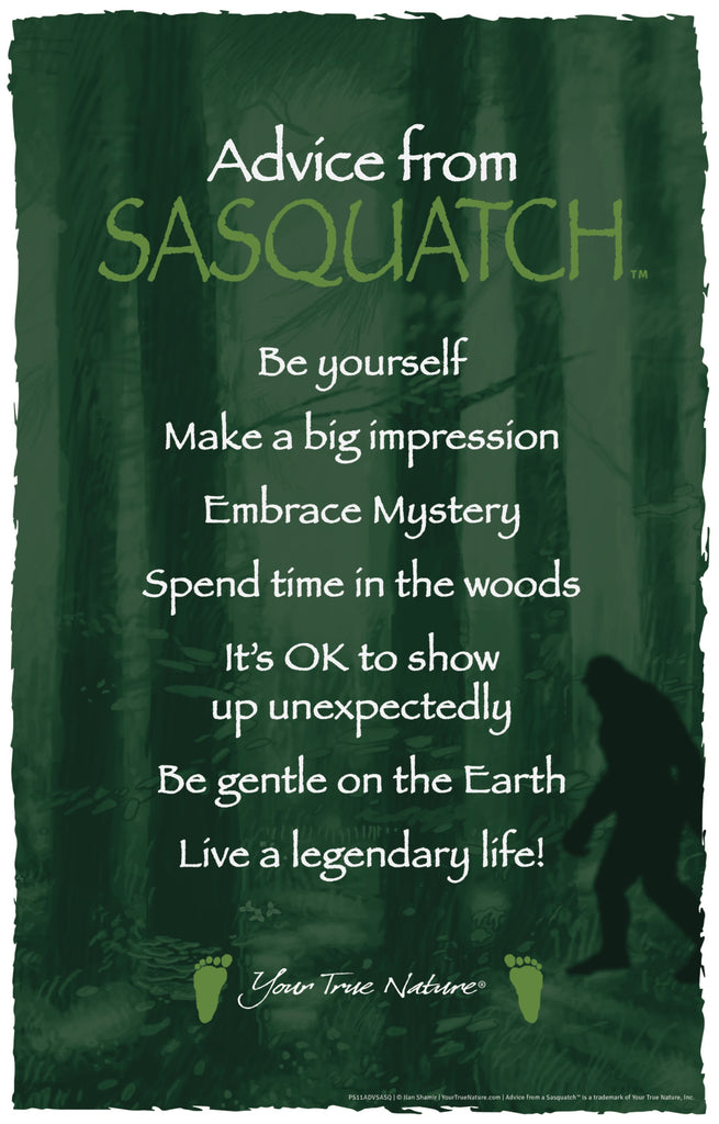 advice from sasquatch frameable art poster 11x17  u2013 your