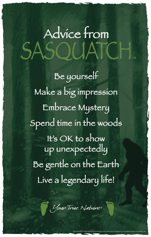 Advice from Sasquatch Frameable Art Poster 11x17