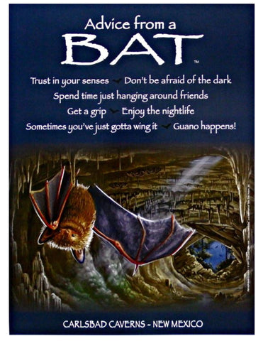 Advice from a Bat - Carlsbad Caverns - Frameable Art Poster 9x12