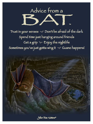Advice from a Bat Frameable Art Poster 9x12