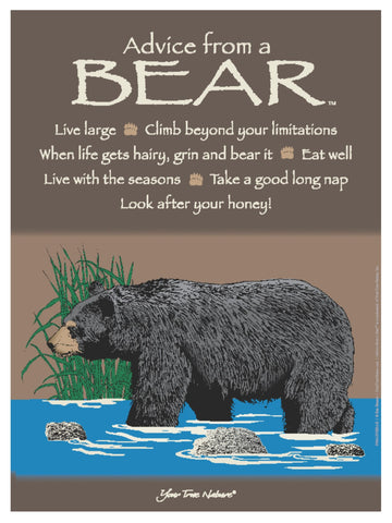 Advice from a Bear Frameable Art Poster 9x12