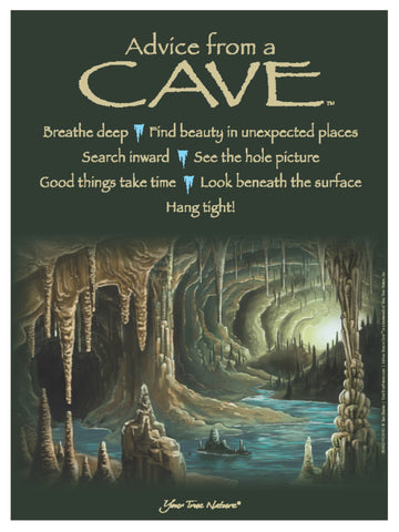 Advice from a Cave Frameable Art Poster 9x12