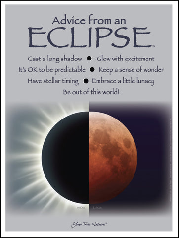 Advice from an Eclipse Frameable Art Poster 9x12