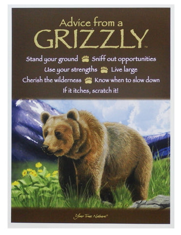 Advice from a Grizzly Frameable Art Poster 9x12