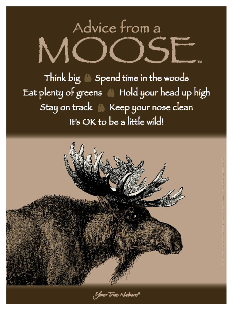 Advice From A Moose Frameable Art Poster 9x12 Your True