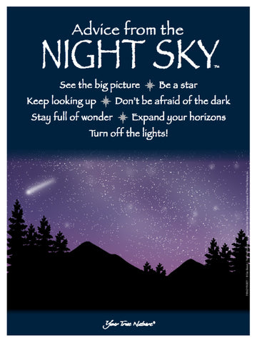 Advice from the Night Sky Frameable Art Poster 9x12