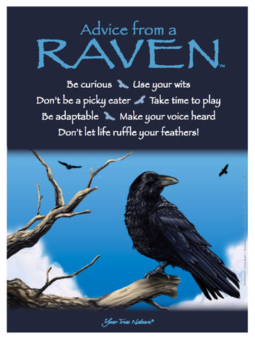 Advice from a Raven Frameable Art Poster 9x12