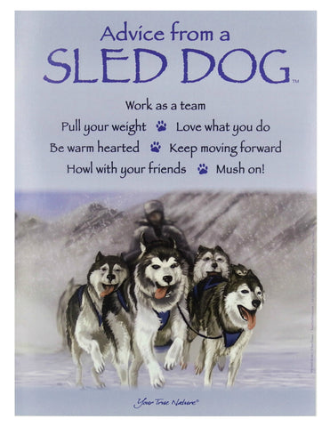Advice from a Sled Dog Frameable Art Poster 9x12