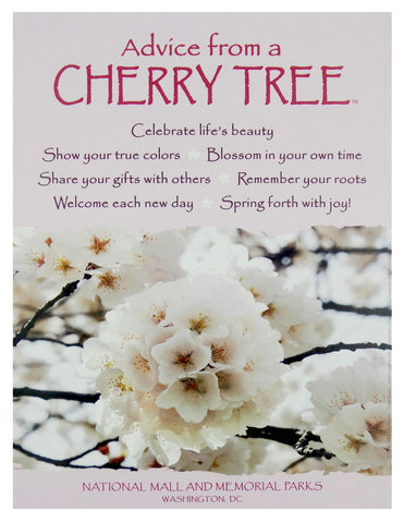 Advice from a Cherry Tree -National Mall and Memorial Parks - Frameable Art Poster 9x12