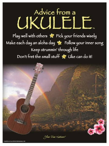 Advice from a Ukulele Frameable Art Poster 9x12