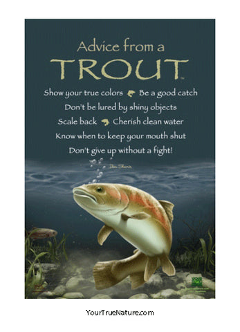 Advice from a Trout Mini Poster