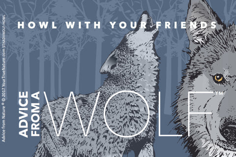 Advice from a Wolf - Designer Sticker