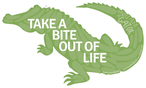 Advice from a Gator - Die Cut Sticker - Large