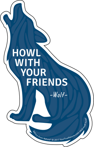 Advice from a Wolf - Die Cut Sticker - Large