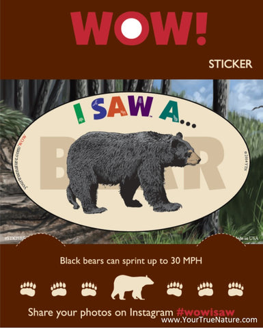 I SAW a Bear Sticker