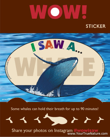 I SAW a Whale Sticker