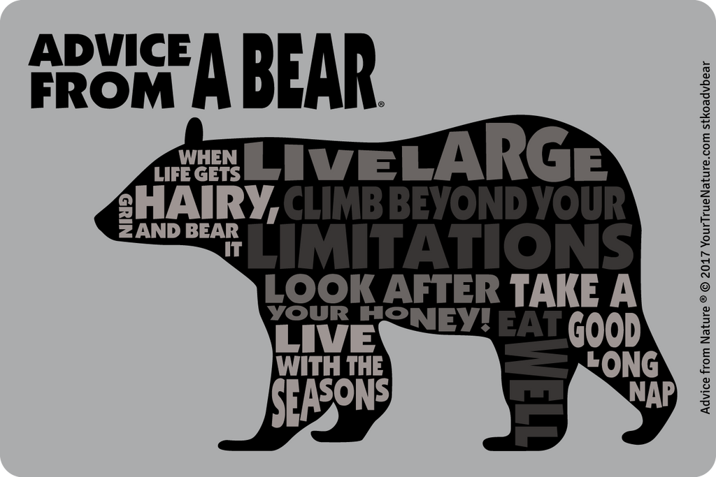 Advice from a Bear  Outline Sticker  Your True Nature Inc