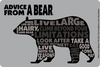 Advice from a Bear - Outline Sticker